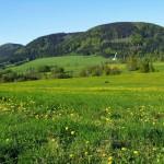 Vakantiehuis Reuzengebergte, Tsjechië, vrije ligging, met zwembad, in de bergen, fenomenaal uitzicht