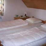Vakantiehuis Reuzengebergte in Tsjechië, berghuis met zwembad, vrije ligging, fenomenaal uitzicht, skivakantie Tsjechie