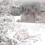 skivakantie Tsjechië, vakantiehuis Reuzengebergte