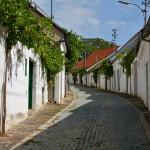 Moravische en Oostenrijkse wijnroute, door wijnstraten en wijndorpen