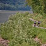 Donauroute Bauernhoftour, Donauroute langs boerderijen, Bauernhoftour, fietsen langs boerderijen, fietsvakantie langs boerderijen, Donauroute van Passau naar Wenen