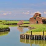 Fietsen Venetië -Florence: natuurreservaat Podelta