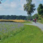 Fietsreis langs de Oostsee
