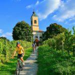 Wijnbouw langs de Murtal radweg