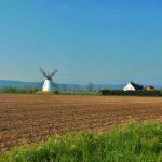 Verderop langs de Weser veel witte molens