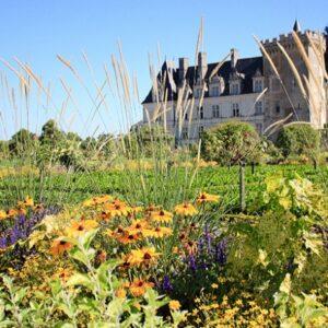 Loire kasteel - fietsvakantie Loire