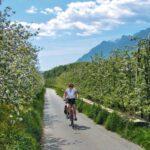 fietsvakantie Italië Gardameer