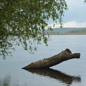 Fietsen langs de Oder Neisse - Oderbruch