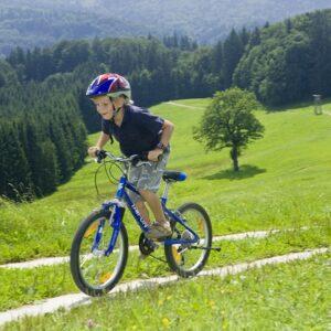 fietsen met kinderen oostenrijk
