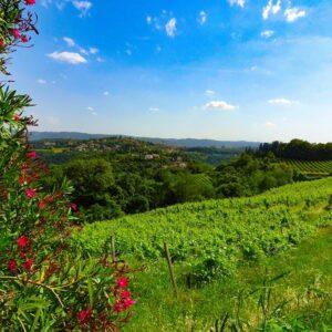 omgeving-Vicenza