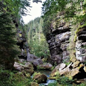 Wandeling Gorges Kamenice - Praag - Dresden