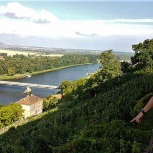Melnik - uitzicht wijnheuvels