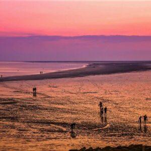 Noordzee - Waddenzee