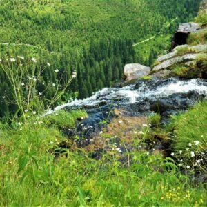 Begin van de Elbe - Krkonose NP
