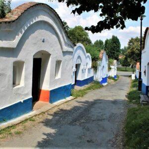 Fietsvakantie Zuid-Moravië Tsjechië - Wijnkelders