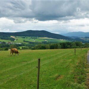 Fietsroute van Praag naar Regenburg