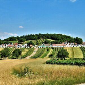 Wijnstraat Galgenberg - Oostenrijk