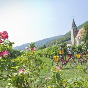 Wachau vallei pauze - fietsen Passau Wenen boerderij